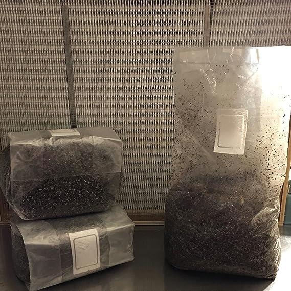 10 lbs Coconut Coir Based Mushroom Growing Substrate
