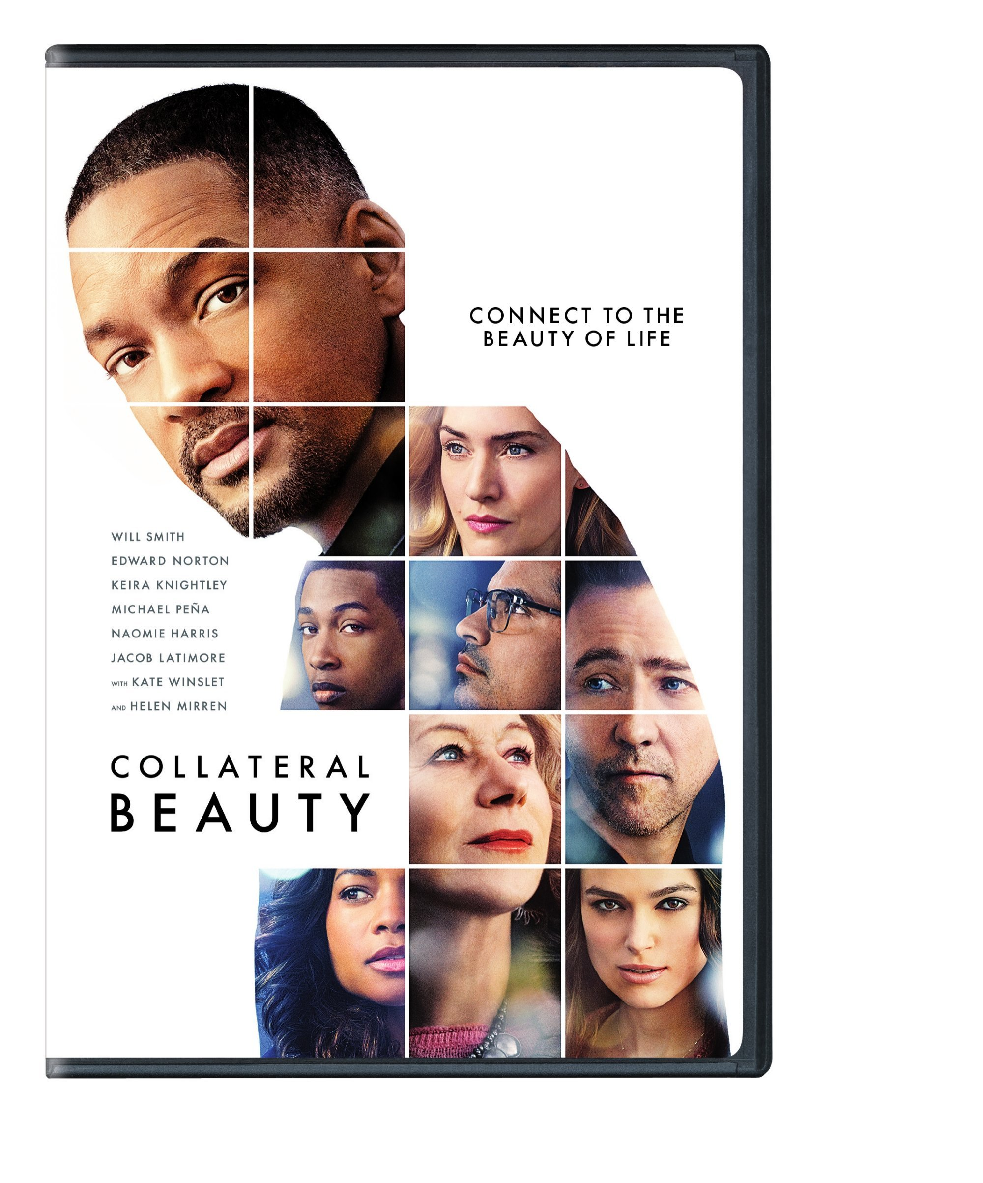 DVD : Collateral Beauty (Eco Amaray Case)