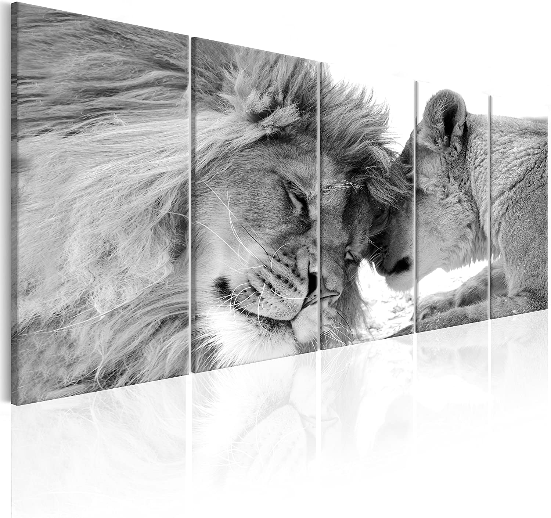 murando - Cuadro en Lienzo León 225x90 cm Impresión de 5 Piezas Material Tejido no Tejido Impresión Artística Imagen Gráfica Decoracion de Pared Naturaleza Animal Paisaje g-B-0061-b-p