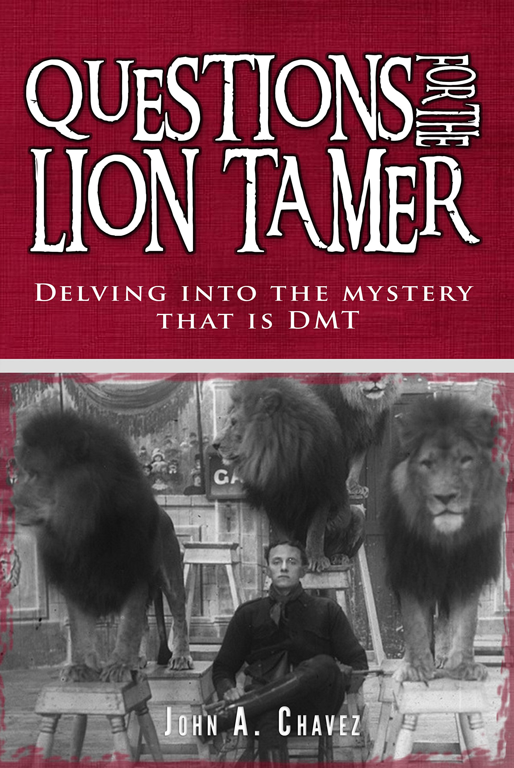 Questions For The Lion Tamer  Delving Into The Mystery That Is DMT  English Edition