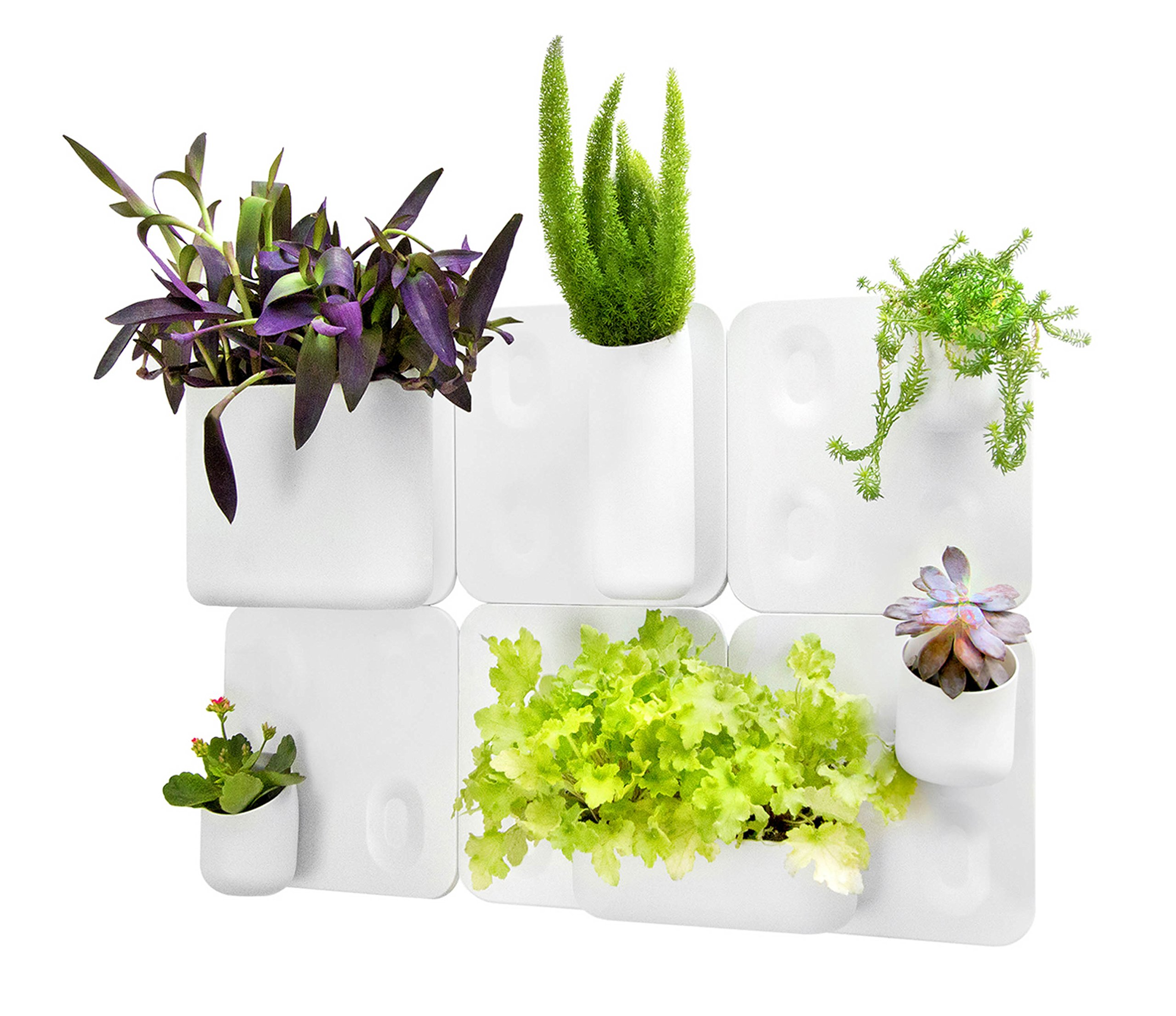 Urbio Big Happy Family Wall Planters