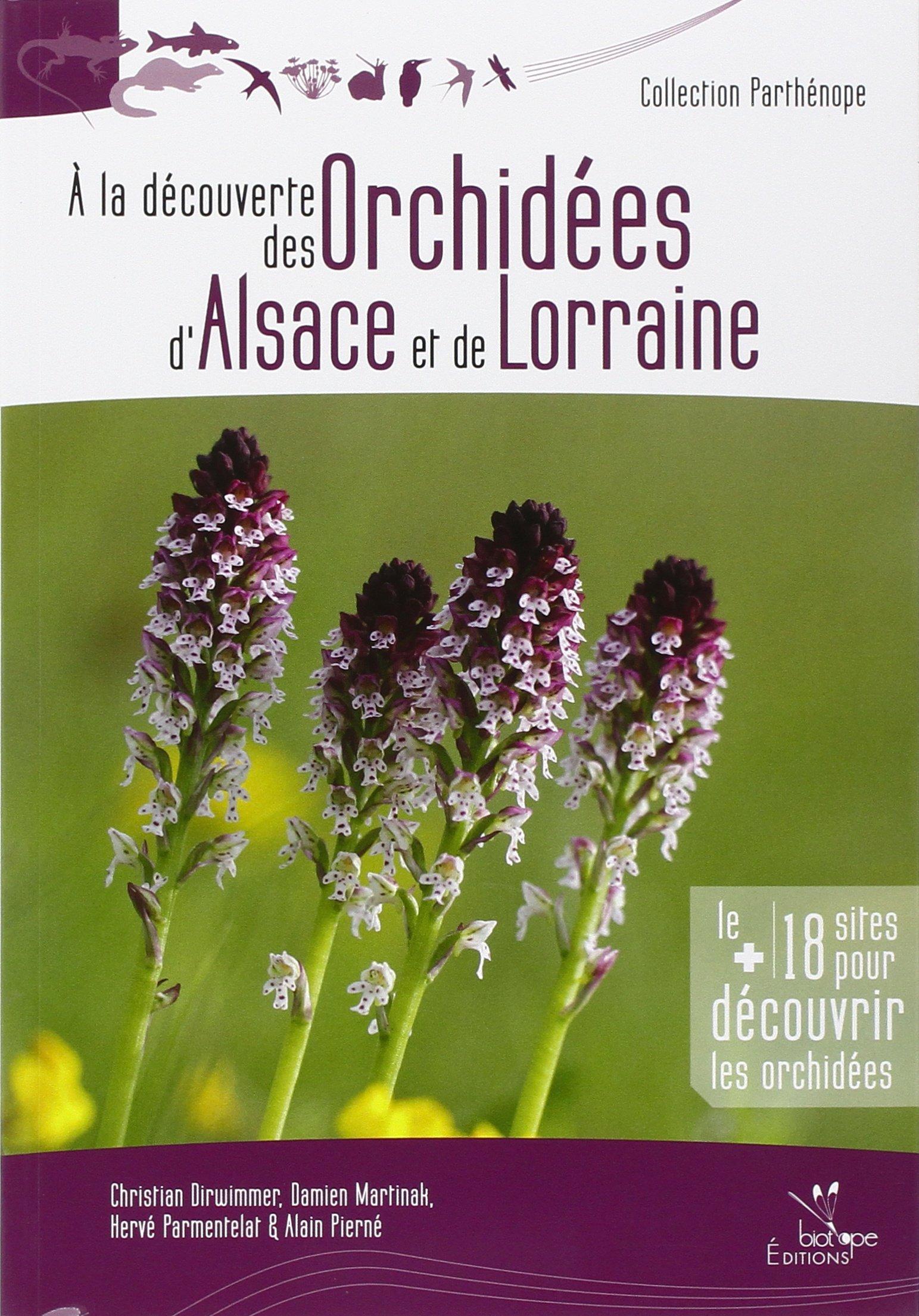 A la découverte des orchidées d'Alsace et de Lorraine