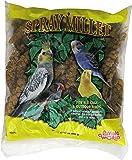 """Living World Spray Millet,17.6""""."""