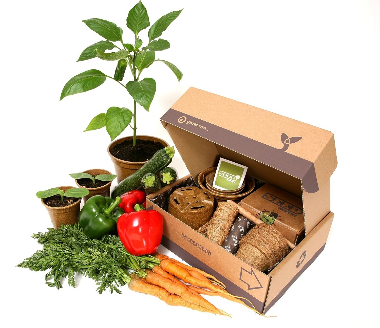 Seed Pantry Jumbo-Samen-Set für Schrebergärten, Starterset