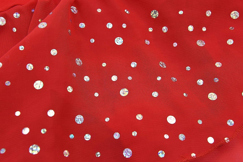 DANSHOW Girls Glitter Leotards for Ballet Dance Dress with Tutu Skirt Petal Sleeve