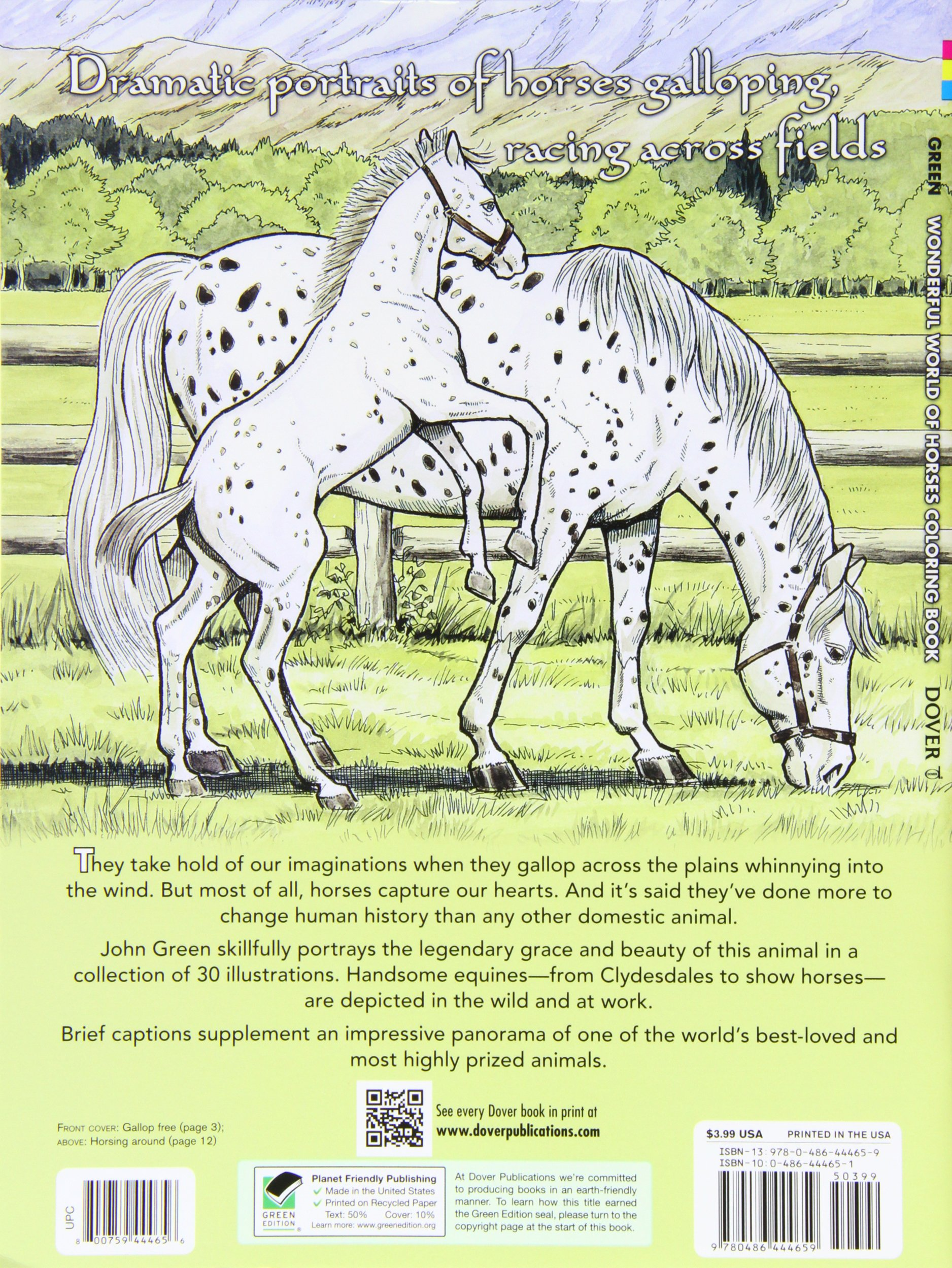 Wonderful World of Horses Coloring Book Dover Nature Coloring ...