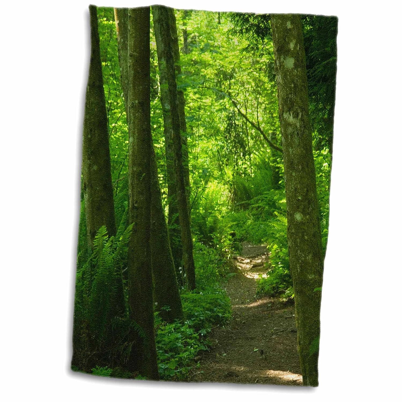 3D Rose Path Winding Through Forest-Bellevue-Washington-Us48 Jda0067-Janell Davidson Hand/Sports Towel 15 x 22