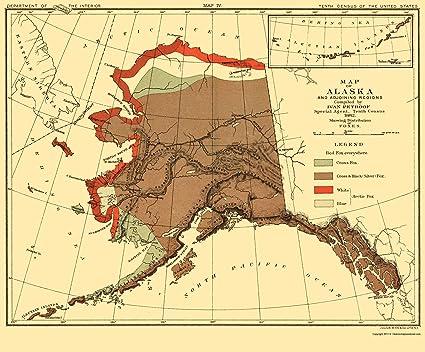 Amazon.com: Old State Map - Alaska Fox Habitat - Bien 1882 ... on fox climbing tree, fox chasing rabbit, fox habitats chart, grey fox range map, fox forest map, fox scientific name, kit fox map, arctic fox map, fox food chain, fox scream sounds, red fox map, red panda territory map, fox fish, fox population chart, fox territory map, fox population by state, fox eating, fox snake map, fox squirrel range map, fennec fox map,
