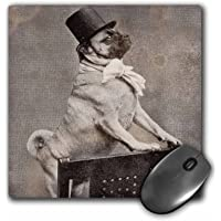 3dRose 8 x 8 x 0.25 Inches Mouse Pad, Pug in Top Hat Sepia TOne (mp_6776_1)