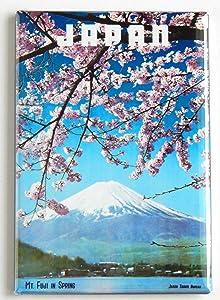 Japan Travel Fridge Magnet
