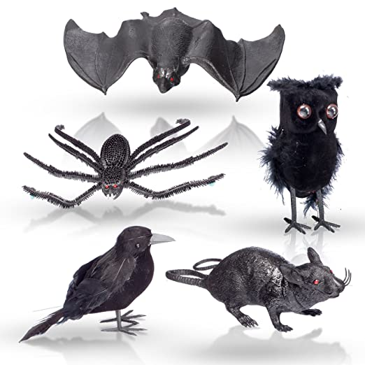 amazoncom halloween home decoration 5 pc set 1 black feathered owl and crow 1 squishy rubbery bat 1 big 10 creepy spider and 1 squeaking rat home - Halloween Crow Decorations