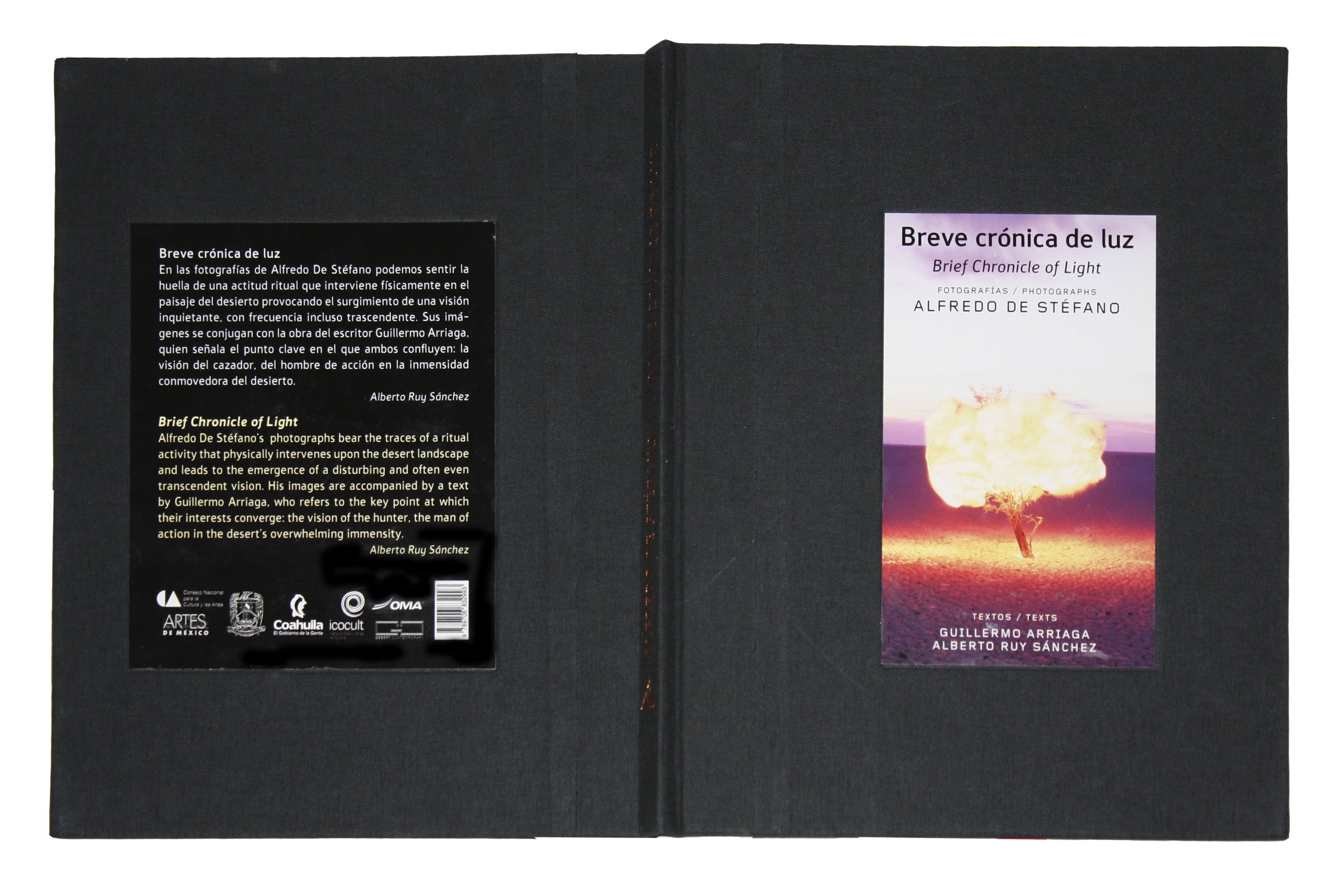 Breve cronica de luz (Brief Chronicle of Light) (Spanish Edition): Guillermo Arriaga, Alfredo De Stefano, Alberto RUY-SANCHEZ: 9789706832993: Amazon.com: ...