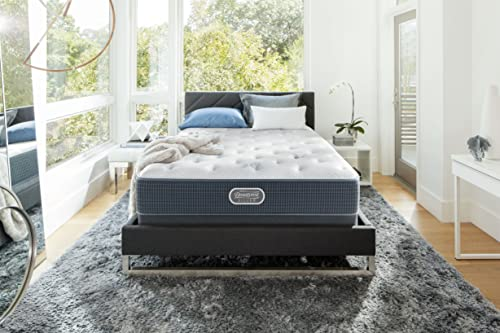 Beautyrest mattress reviews consumer report