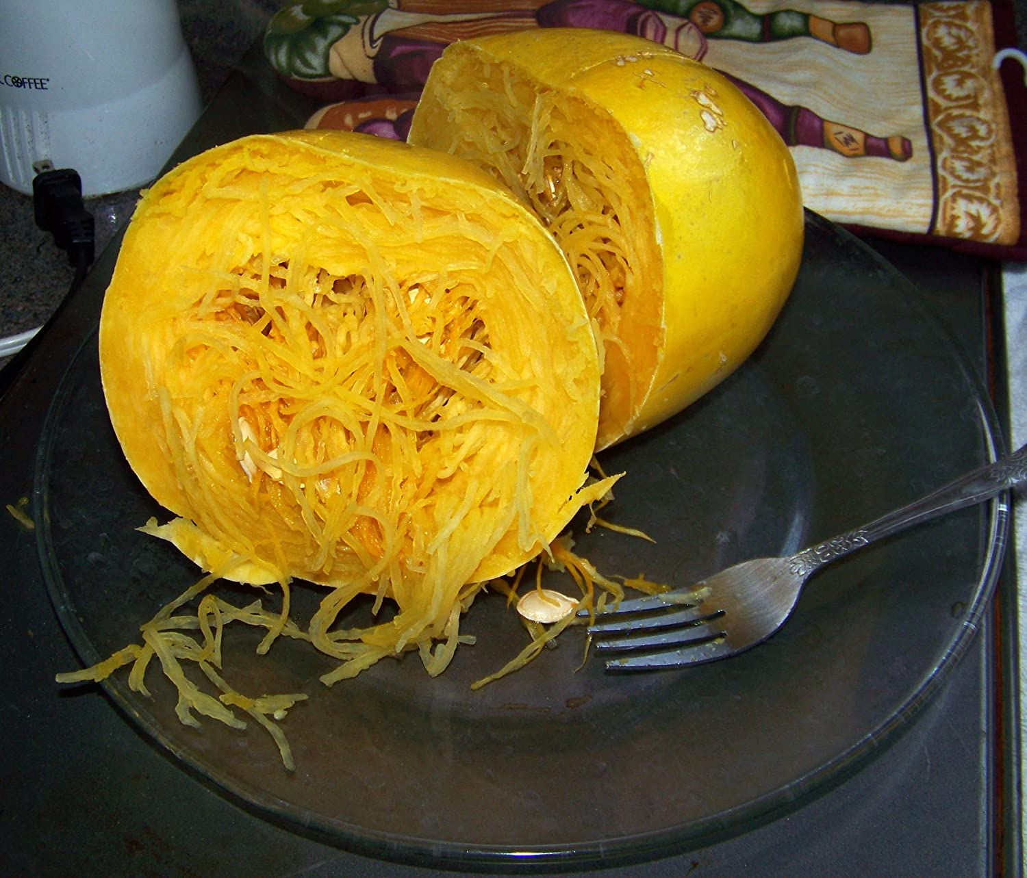 2g (Approx. 14) Spaghetti Squash Seeds, Excellent Dietary Substitute for Spaghetti or Macaroni 'Fresh Seeds - Best Before 12.2017!'