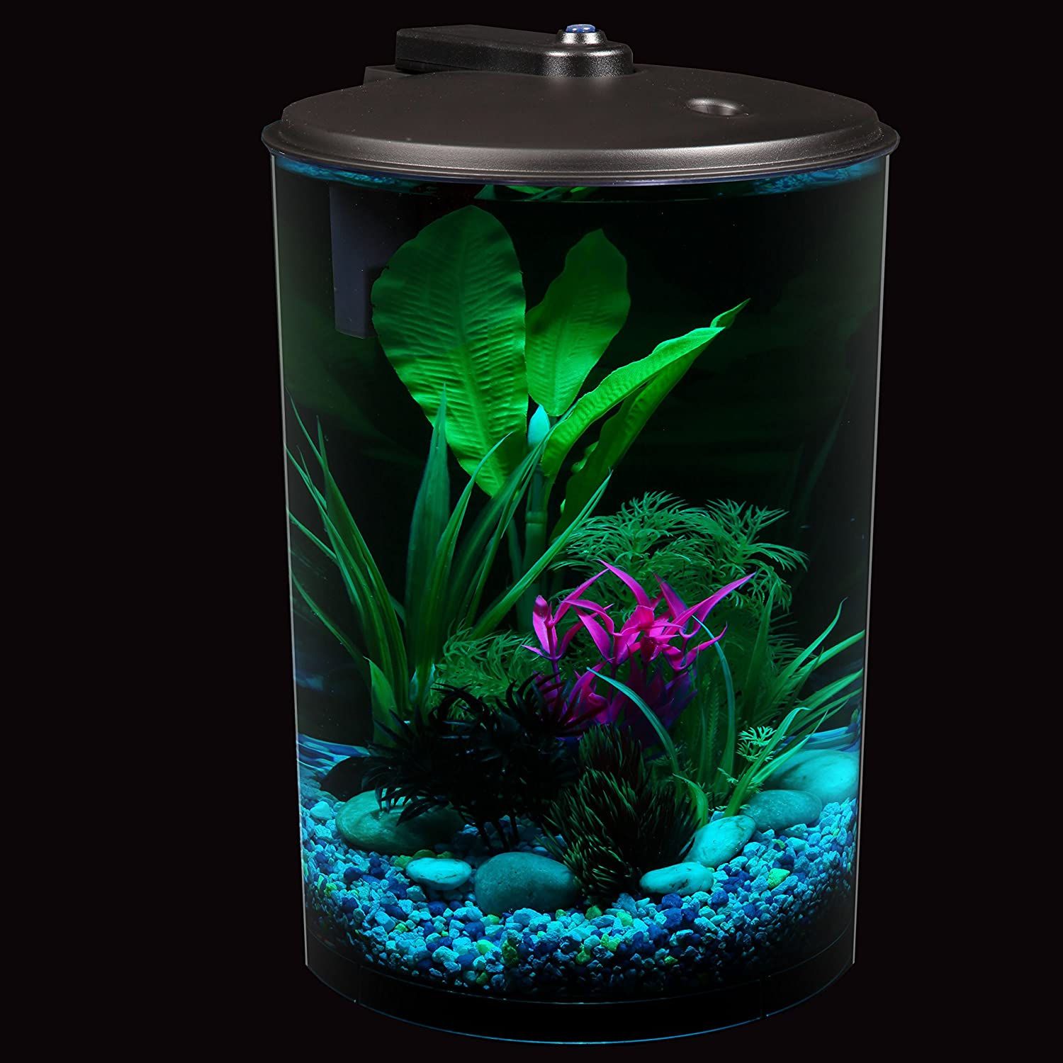 aquarium moonlights thing thought where led mine but white lights light the can same said dsc s new whole saint forums your m to this pretty bee blue threads still my too tup i moon bright