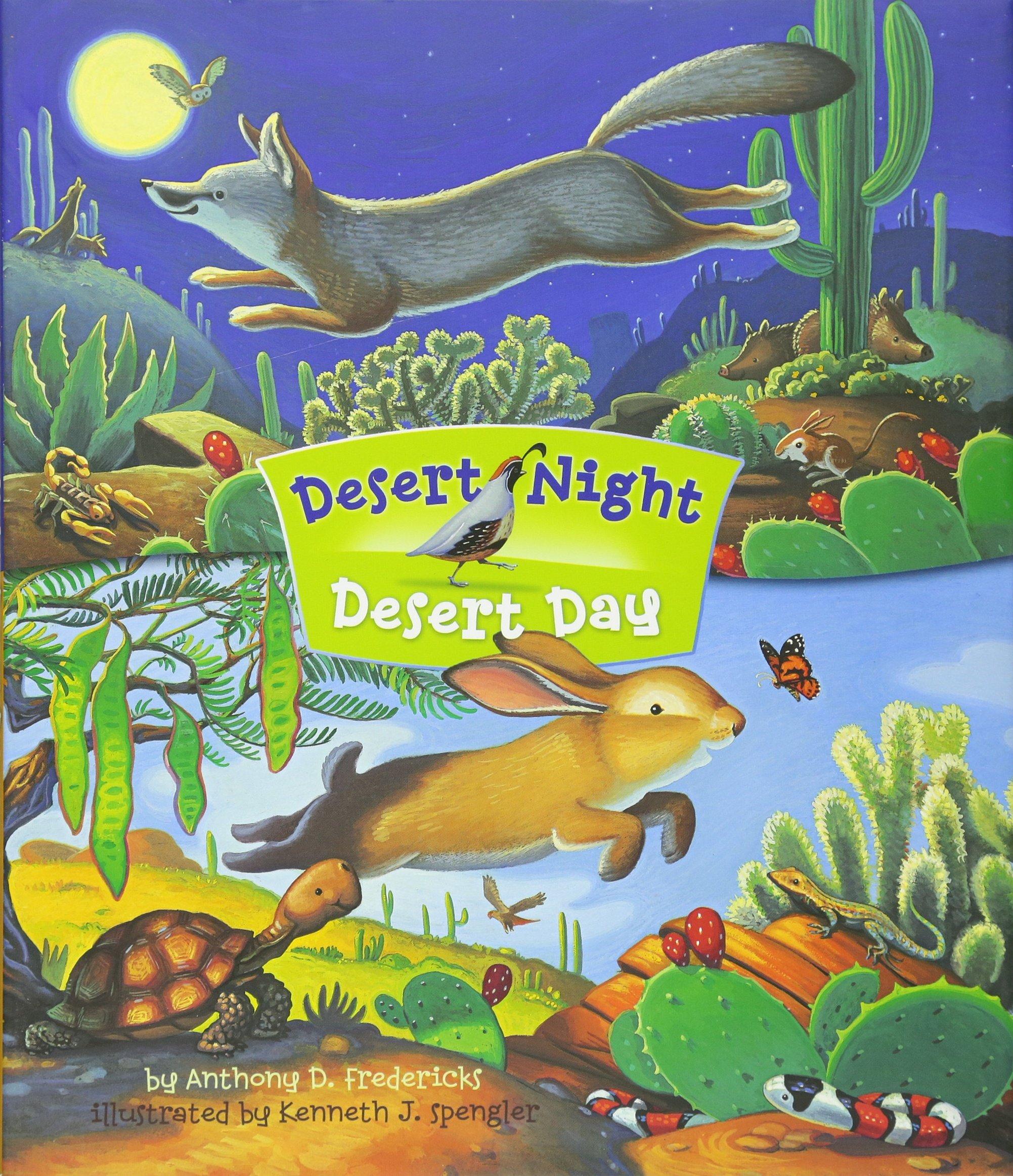 Desert Night Desert Day
