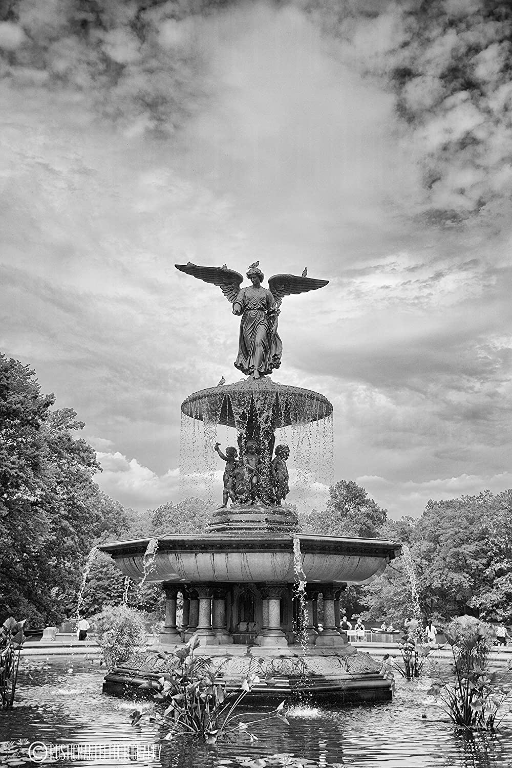 Amazon com bethesda fountain with clouds black and white hdr