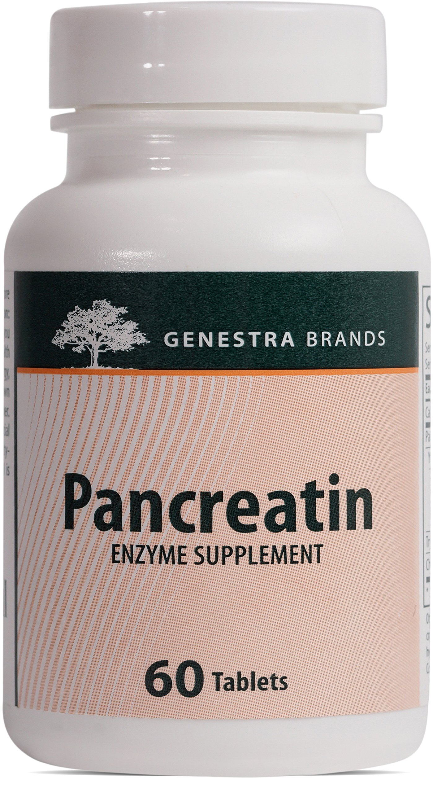 Genestra Brands - Pancreatin - Pancreatic Enzymes to Support Digestion and Nutrient Absorption* - 60 Tablets