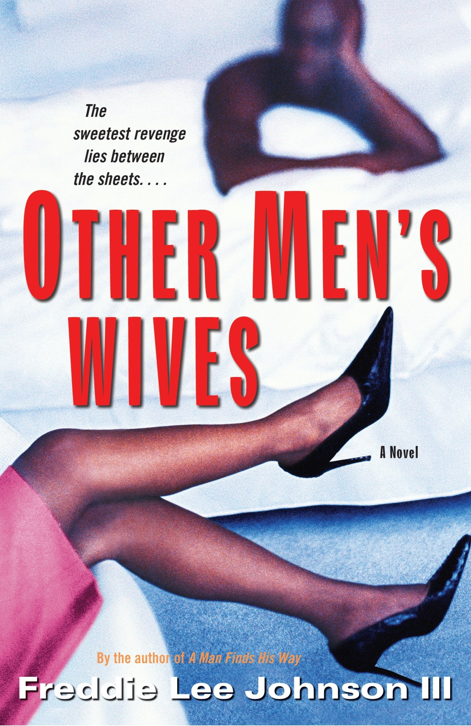 Download Other Men's Wives: A Novel pdf epub