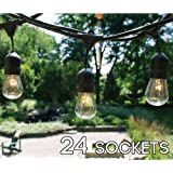 Amazon Com 7 Ft Deluxe Lighted Led Cactus String