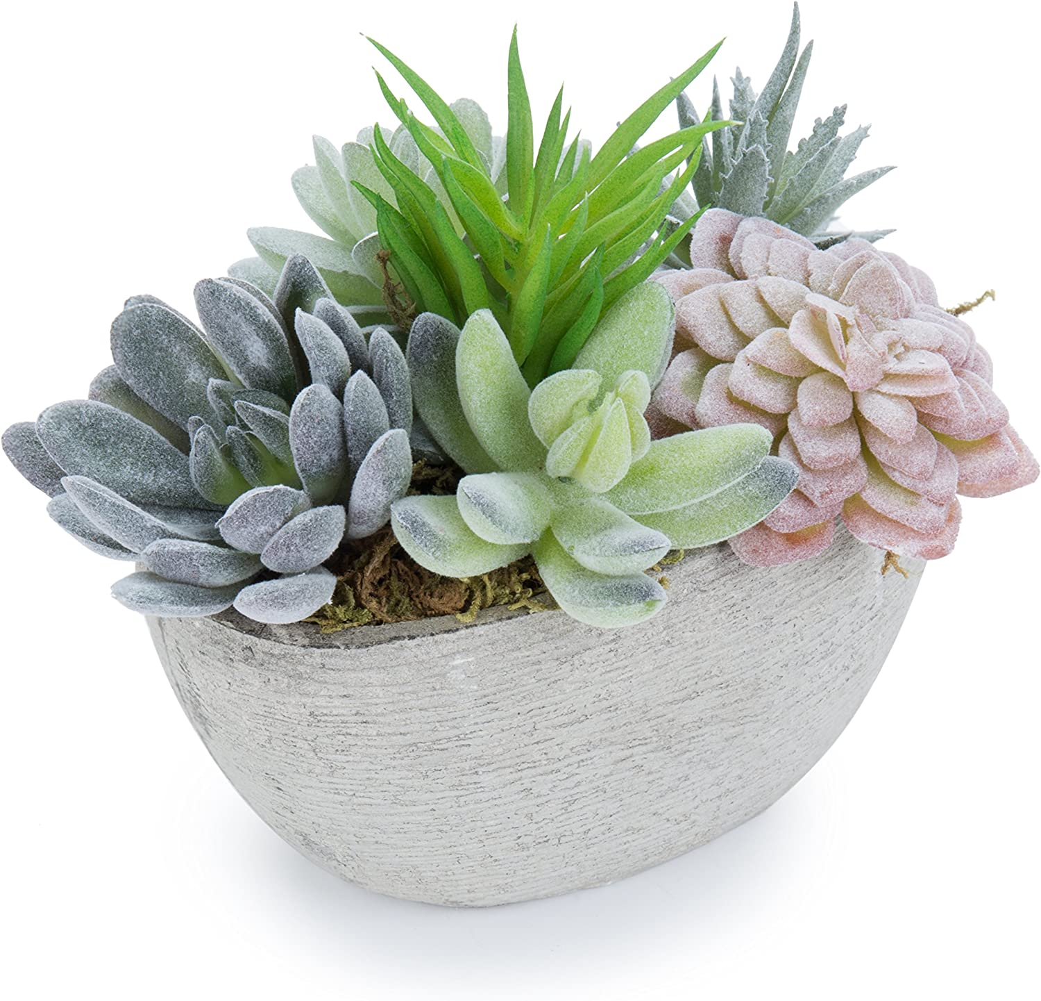 Amazon Com Mygift 7 Inch Tabletop Assorted Artificial Succulent Plants In Decorative Oval Textured Pulp Pot Plant 2 Home Kitchen
