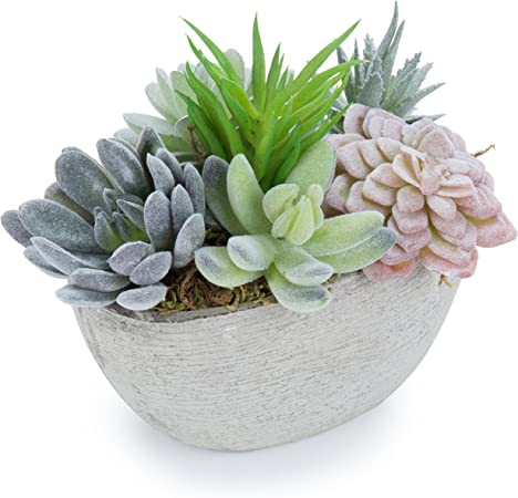 Amazon Com Mygift 7 Inch Tabletop Assorted Artificial Succulent