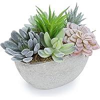 MyGift - Plantas suculentas artificiales de 7 pulgadas en maceta decorativa con textura ovalada (planta 2)