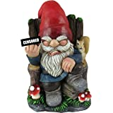 World of Wonders - Gnaughty Gnomes Series - Wrong Side of The Garden - Collectible Indoor Outdoor Grumpy Gnome on Throne Offe