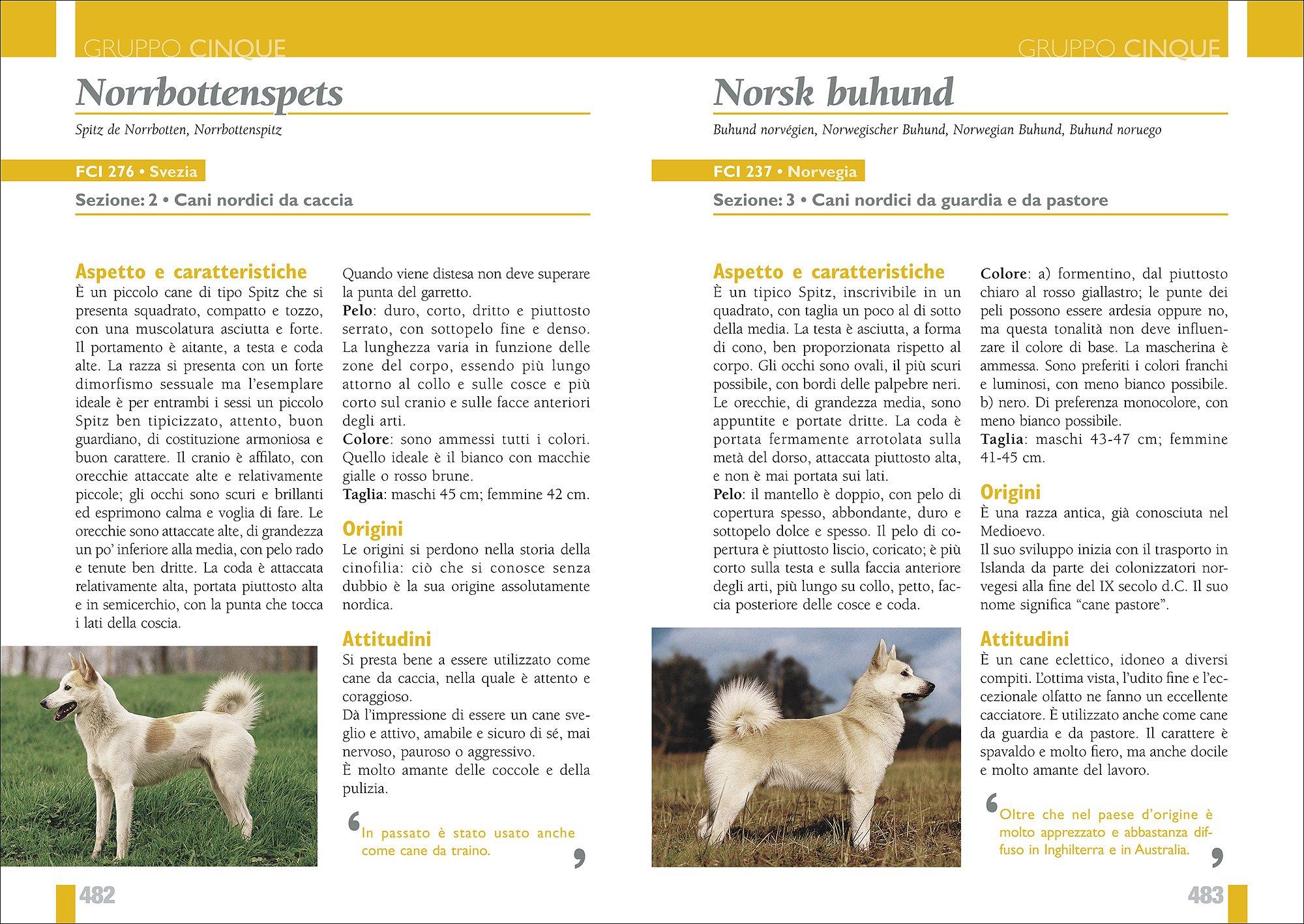 Amazonit Enciclopedia Internazionale Cani Tutte Le Razze Storia