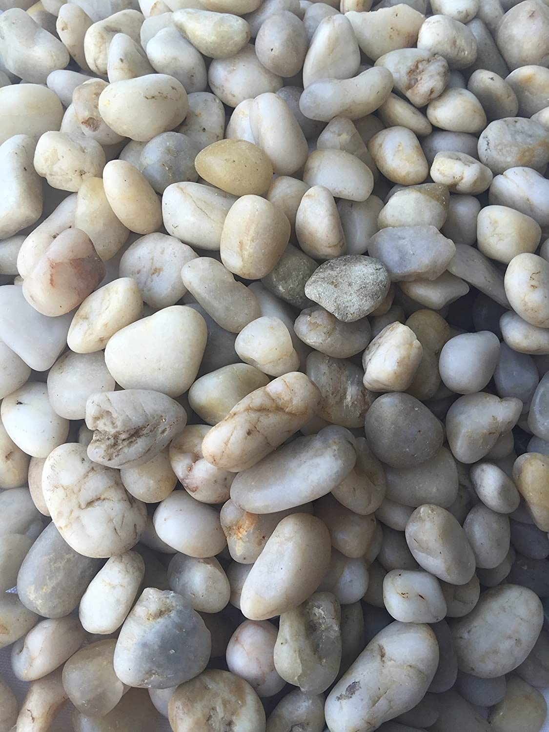 Amazon.com : Decorative Garden Pebbles/river Rocks Used For Outdoor  Landscaping Or Indoor Projects (fish Tanks And Potted Plants) 30 Lbs  (small, ...