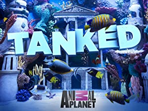 30+ Watch Tanked Online Free  Pics
