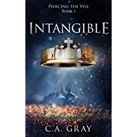 Intangible (Piercing the Veil Book 1)