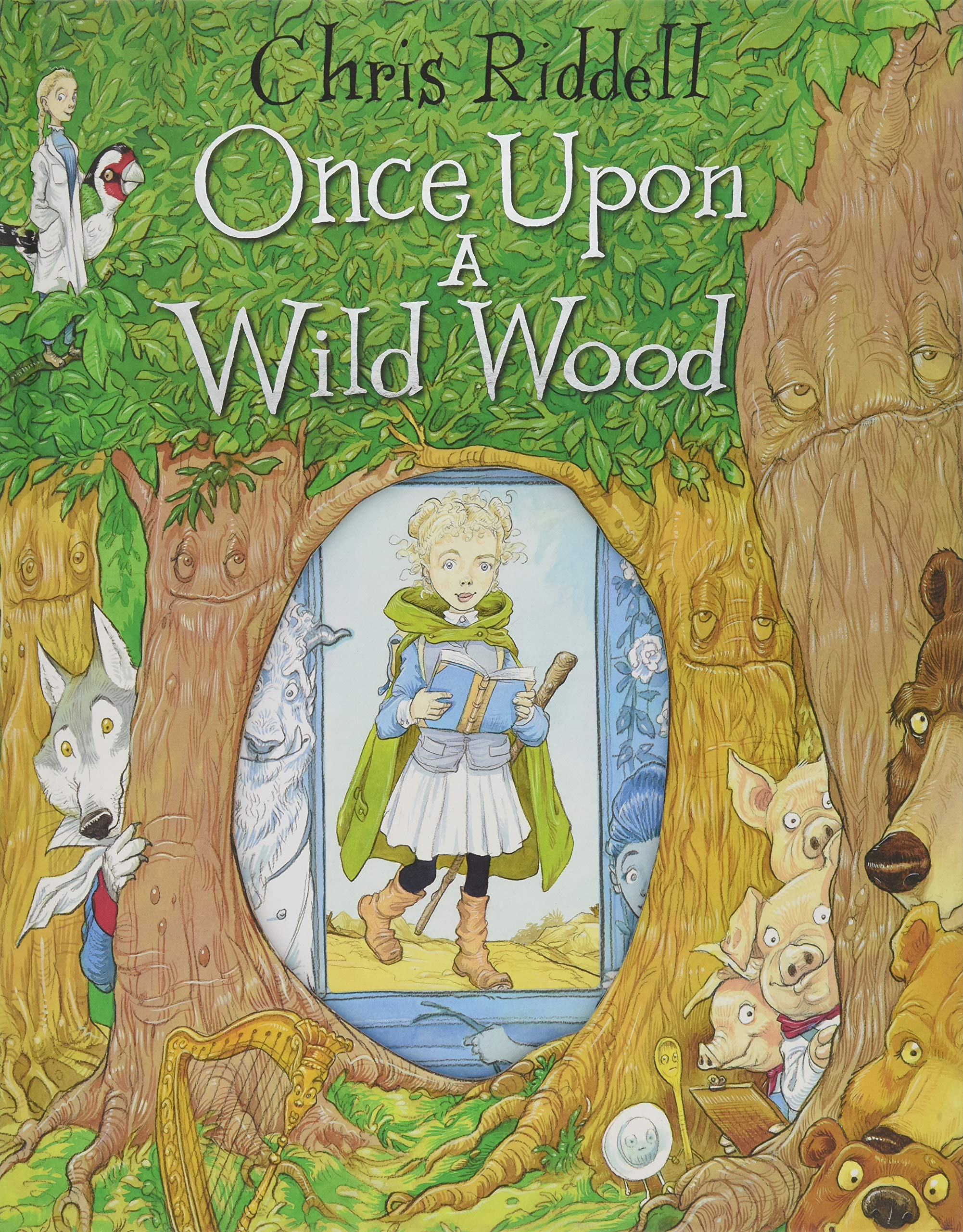 Image result for ONCE UPON A WILD WOOD by Chris Riddell