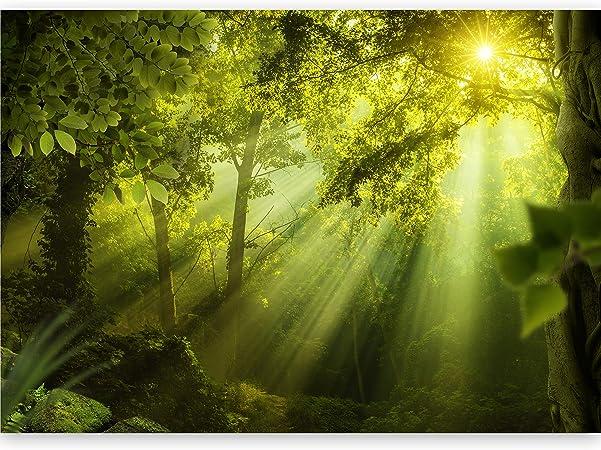 VLIES FOTOTAPETE Tapete Poster   F15950 XXL Wald Wald Natur Baum Blätter Naturla