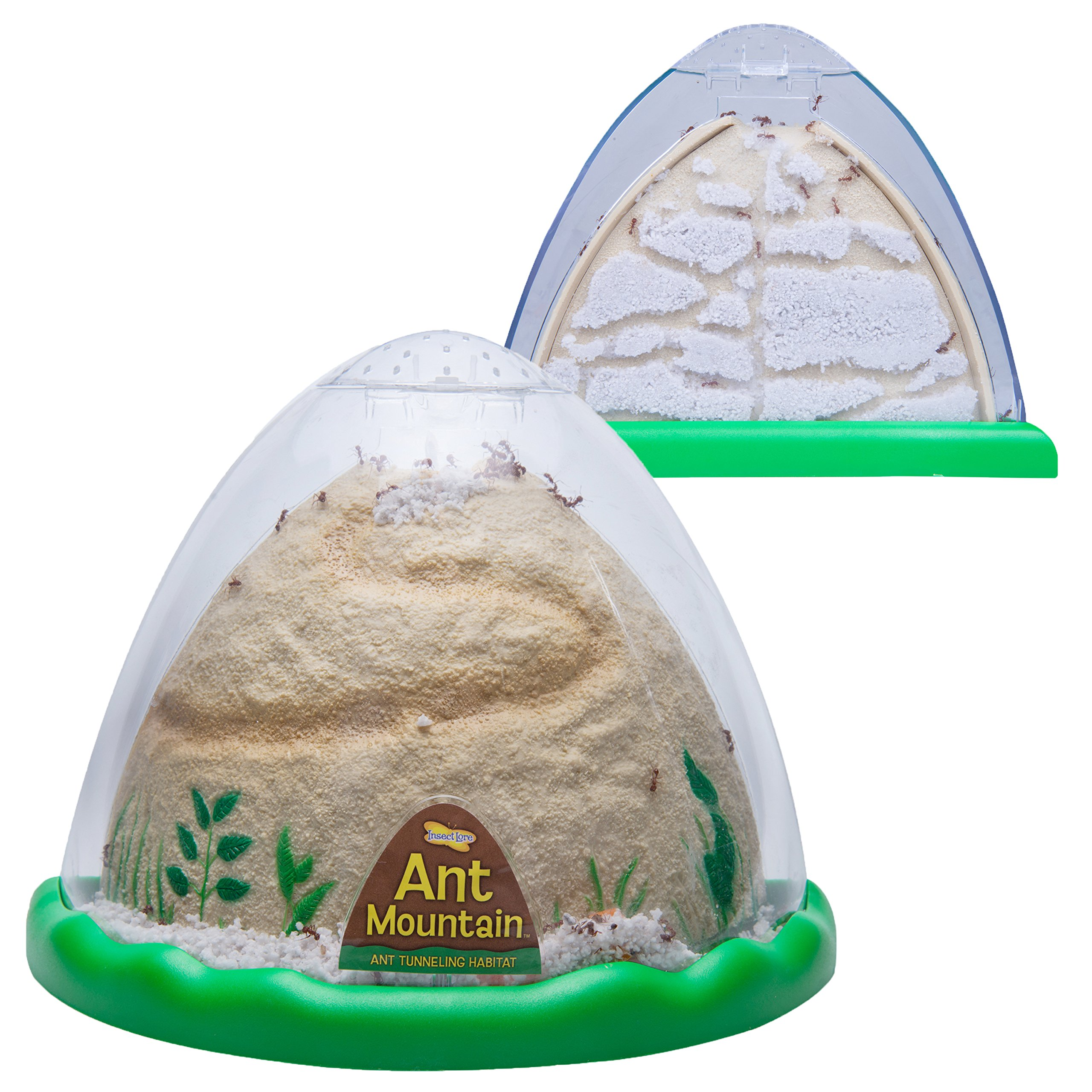 Insect Lore Ant Farm - Two Sided Ant Mountain- Includes Habitat, Sand And Voucher for Live Ants by Insect Lore