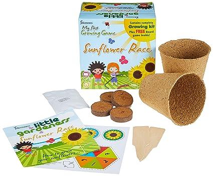 Mr Fothergills LITTLE GARDENERS VEGGIE GARDEN KIT Fun All In One Kit for Kids