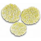 Kärcher 2.863-198.0Karcher Pads de polissage pour sols en pierre, linoléum et PVC accessoire pour aspiro-cireuse