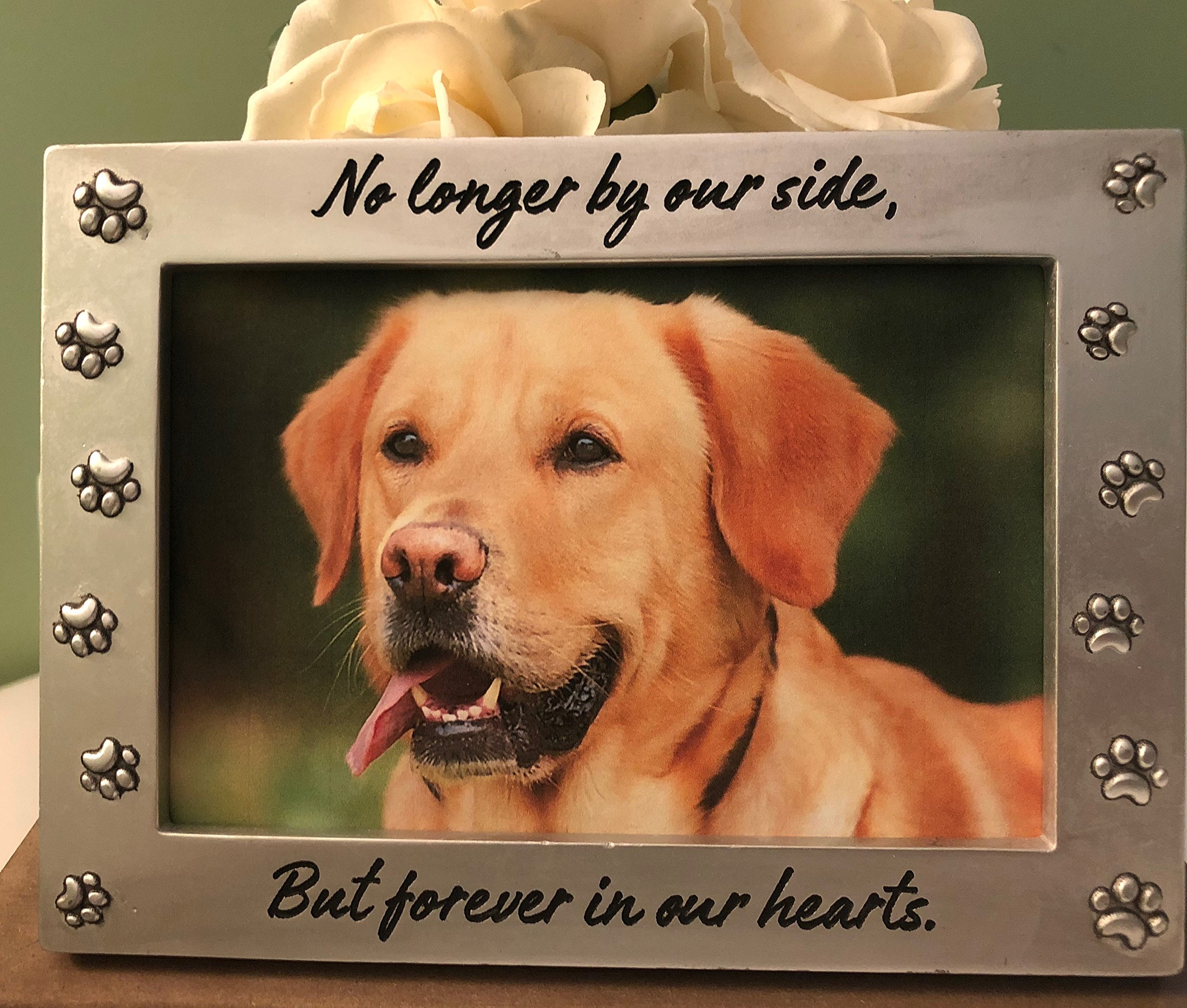 Pet Memorial Picture Frame Keepsake for Dog or Cat, Perfect Loss of Pet Gift for Remembrance and Healing by PetLandia
