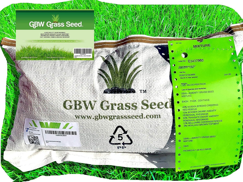 1kg de semillas de césped de calidad premium para cubrir 35 metros cuadrados–Semillas de césped resistentes y de rápido crecimiento–Excepcional grado de tolerancia al agua–Garantía del 100%