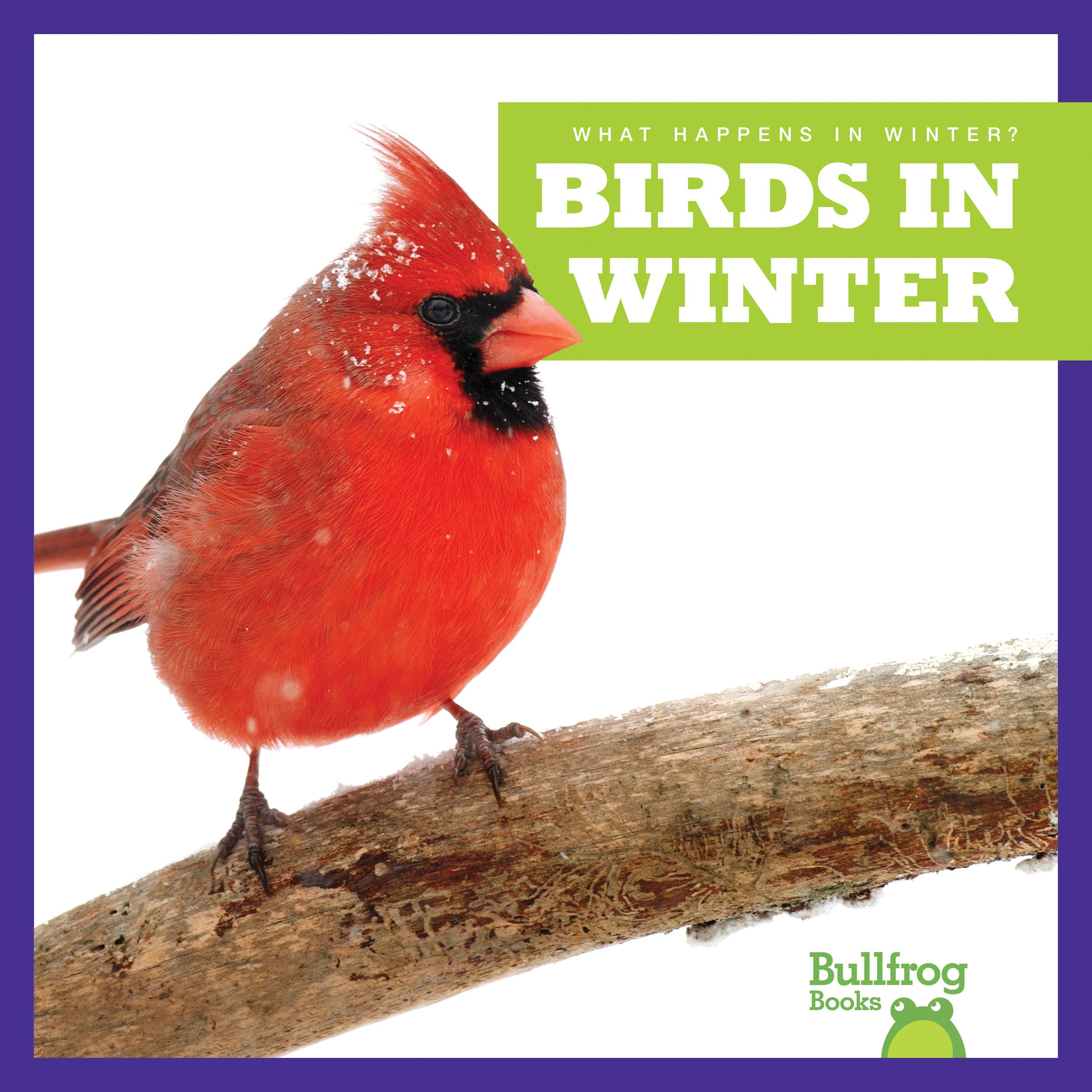 Download Birds in Winter (Bullfrog Books: What Happens in Winter?) PDF Text fb2 book