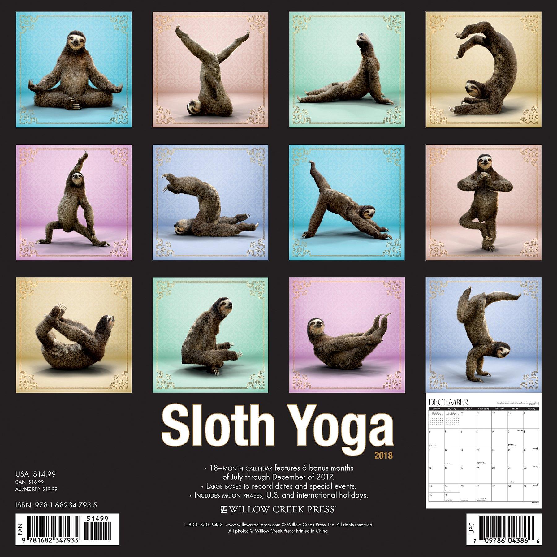 Sloth Yoga 2018 Wall Calendar: Amazon.es: Willow Creek Press ...