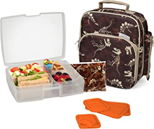 Bentology Lunch Bag and Box Set for Boys - Includes Insulated Durable Tote Bag with Handle and bottle holder, Bento Box, 5 Containers and Ice Pack - BPA & PVC Free (Fossils)