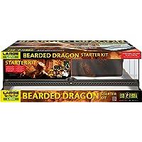 EXO TERRA Kit de Incio para Dragon