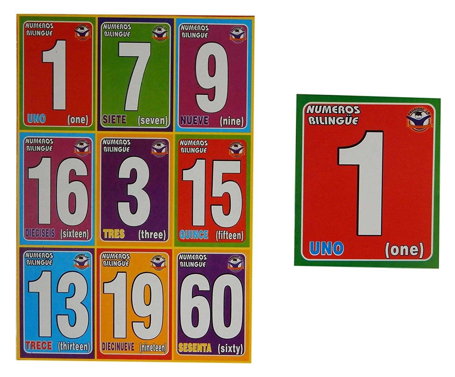 Amazon.com: Prodidac Jr Bingo Bundle: Alphabet, Numbers, Colors and Human Body: Toys & Games
