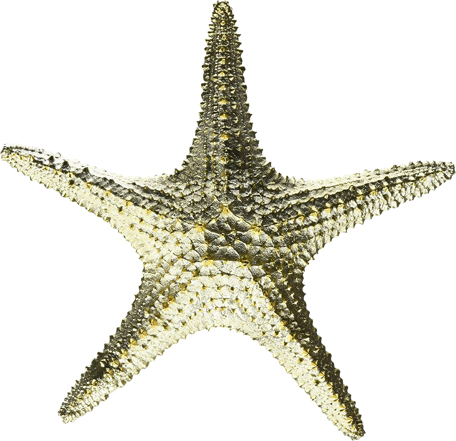 Starfish Star Fish Shell Gold Sculpture Tropical Decoration Table Top D15317FBA
