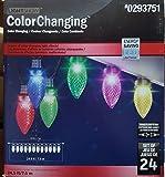 Gemmy Lightshow 24.5 ft. 24-Count Multi-Color Light String with Lights