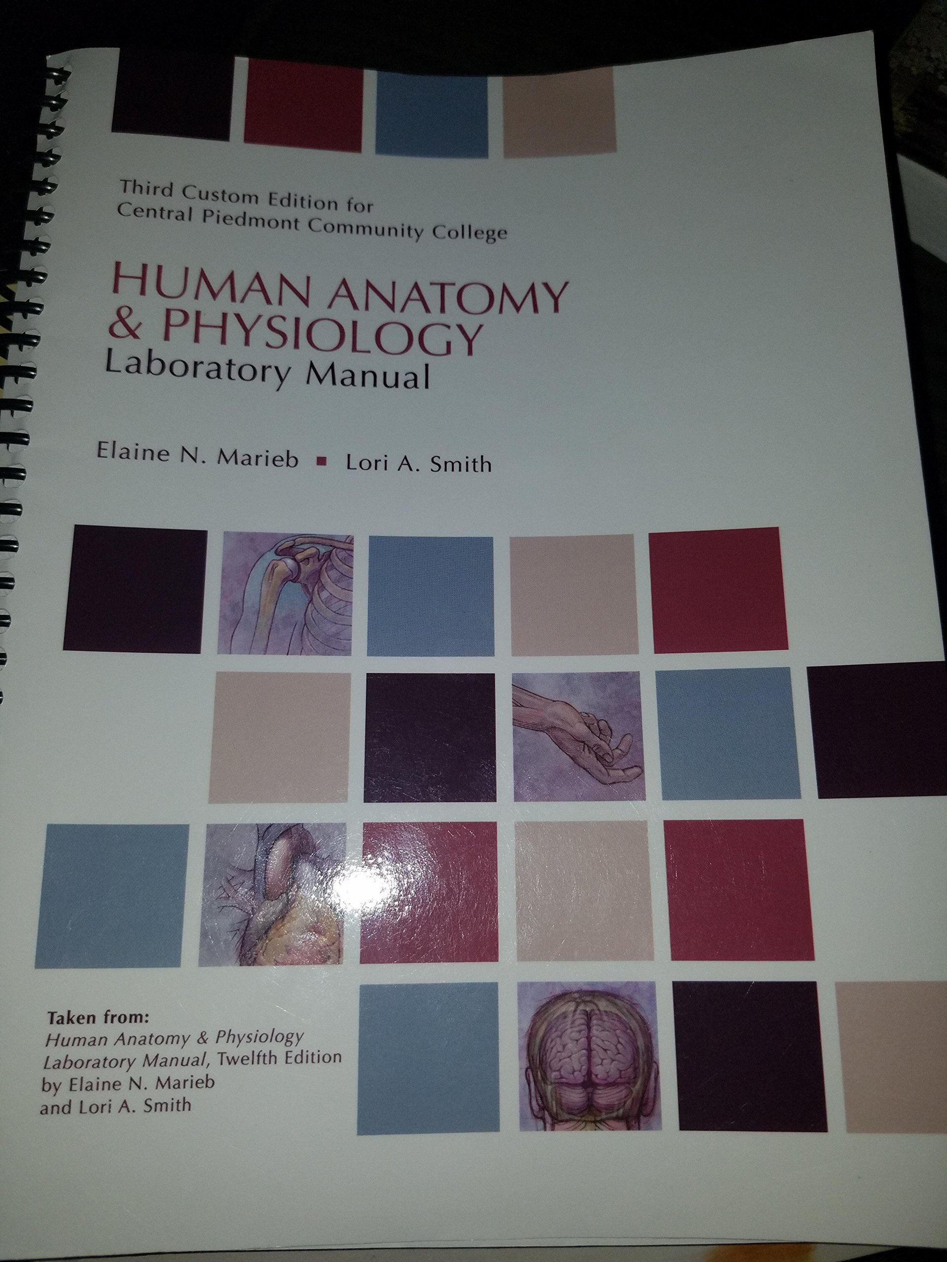 Human Anatomy & Physiology Laboratory Manual Third Custom Edition ...