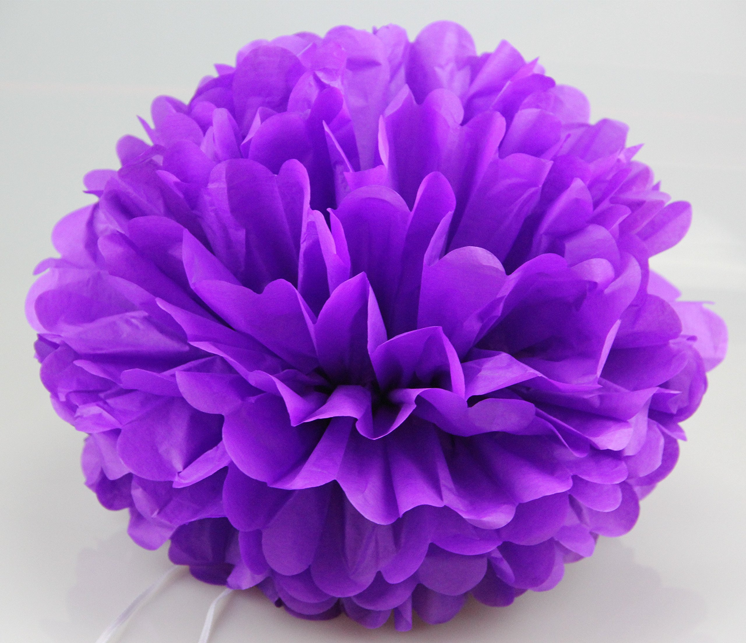 Jesipi Lavender Purple Lilac Tissue Paper Pompoms Wedding Decoration Hanging Party Supplies in 3'' 4'' 6'' 8'' 10'' (Pack of 12) (10'')
