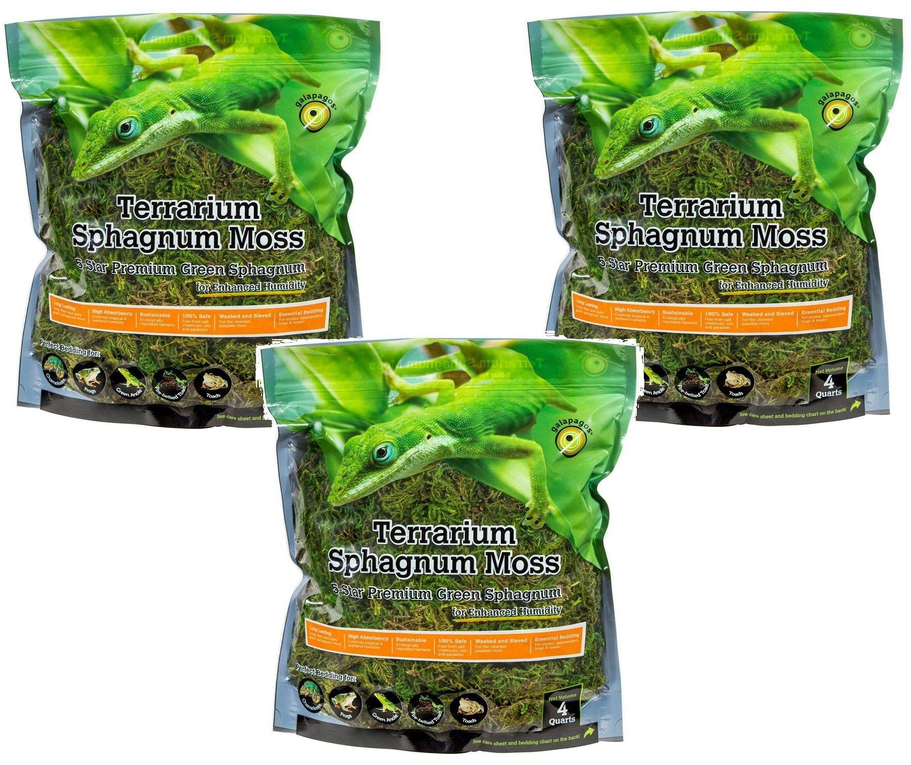 Galápagos Terrarium Sphagnum Moss, 5-Star Green Sphagnum, Natural, 4QT (3 Pack)