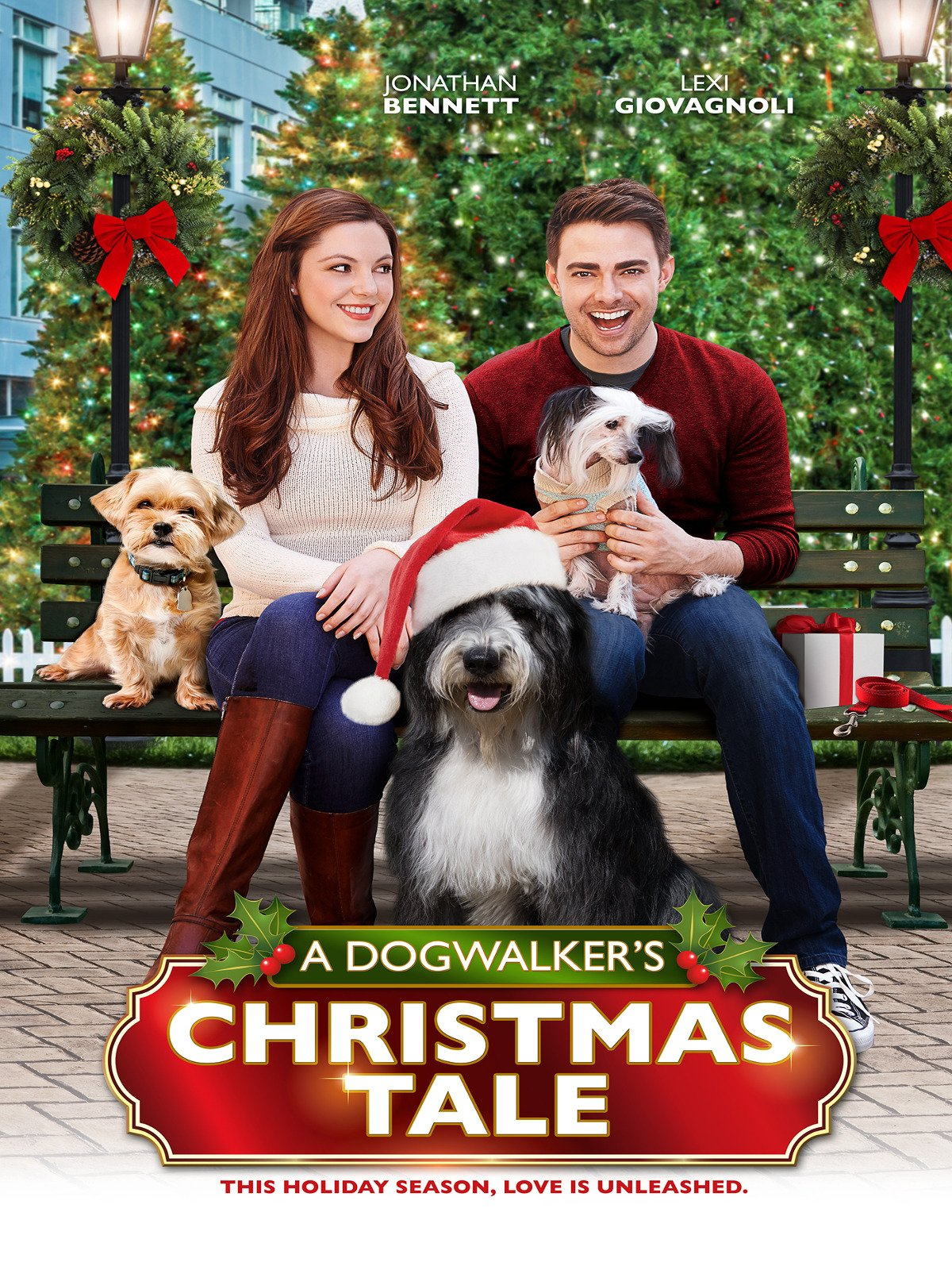 Image result for A Dogwalker's Christmas Tale